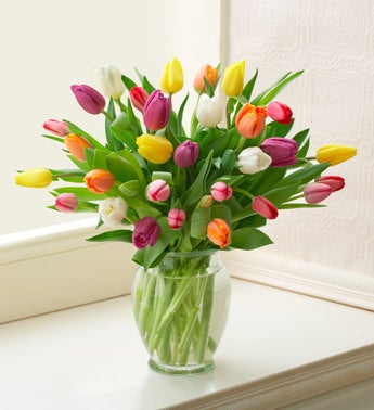 Tulip Bouquet - 30 stems