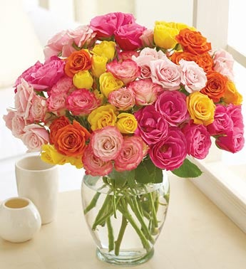 50-Bloom Multicolored Spray Roses
