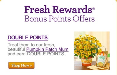 Fresh Rewards? Bonus Points Offers Double Points Treat them to our fresh, beautiful Pumpkin Patch Mum and earn DOUBLE POINTS. >>Shop Now