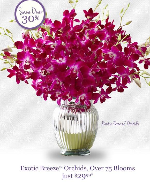 800-FLOWERS.COM... 1 800 Flowers.com