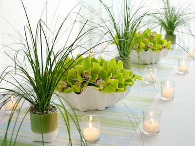Tabletop Beach Decor