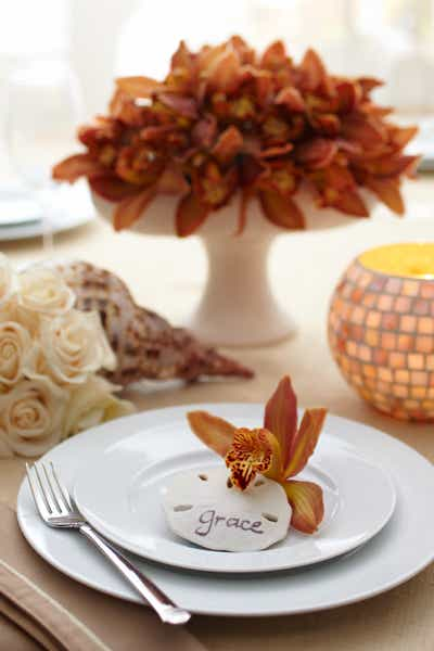 Sand Dollar and Orchid Centerpiece