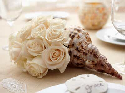 White Roses in Sea Shell