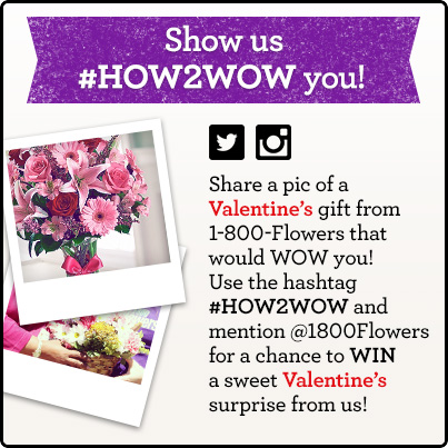 How-2-Wow-V-Day-2014-Giveaway