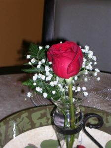 Perfect Red Rose in a Vase