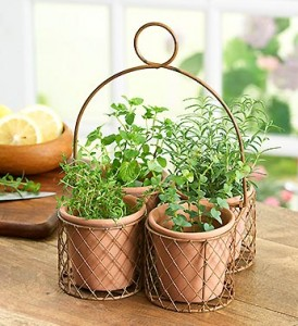 grow herbs in the house