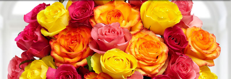 Send roses.