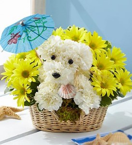 dog flowers from 1800flowers