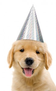 Party Pup Smile