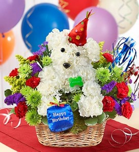 Dog flowers for dog lovers from 1800flowers.com.