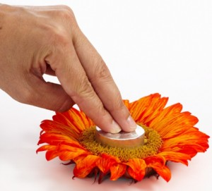 step to on how to make a sunflower votive
