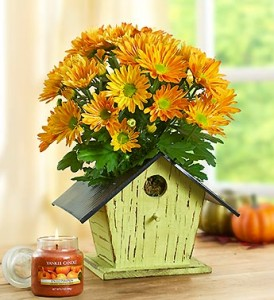 bird-house-of-blooms-for-fall