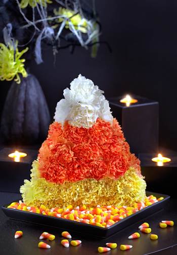 Create your own candy corn floral arrangement for Halloween!