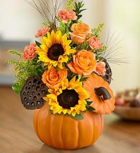 autumn-pumpkin-flowers