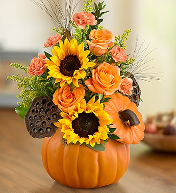 autumn-pumpkin-flowers