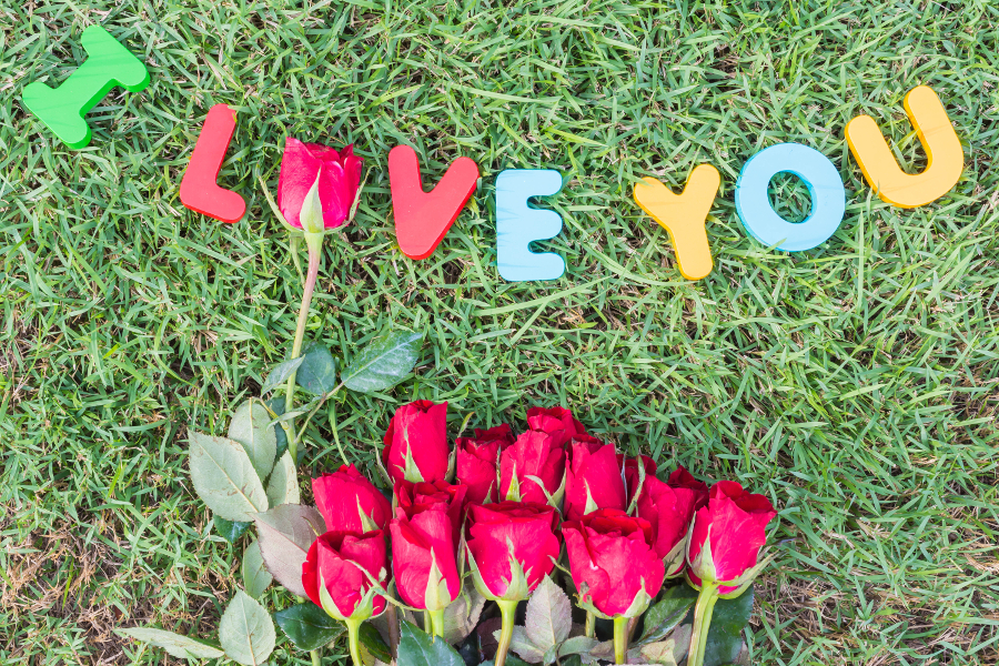 I Love You Spelled Out and Red Roses