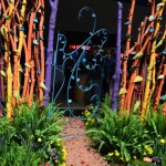 Colorful Garden Gates