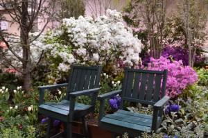 Benches in a Garden