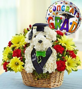 It's Your Day Graduation A-Dog-Able