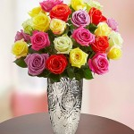 Mother's Day Multicolored Roses
