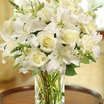 Fight With White Classic All-White Arrangement