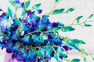 orchid-summer-flowers-bouquet
