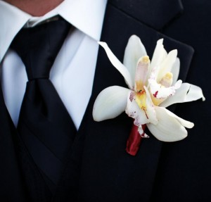 Marianna's Groom Wearing a Vineyard-Inspired Orchid Bouttoniere