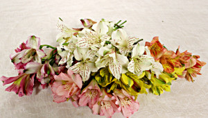 diy-floral-crown_flowers
