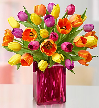 assorted-tulips-pink-vase