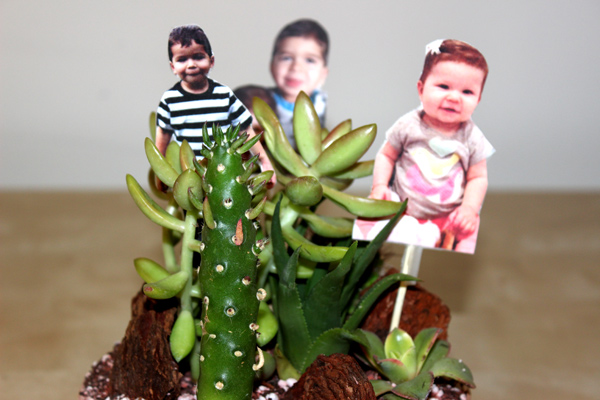 diy-fathers-day-gifts_photo-terrarium-3