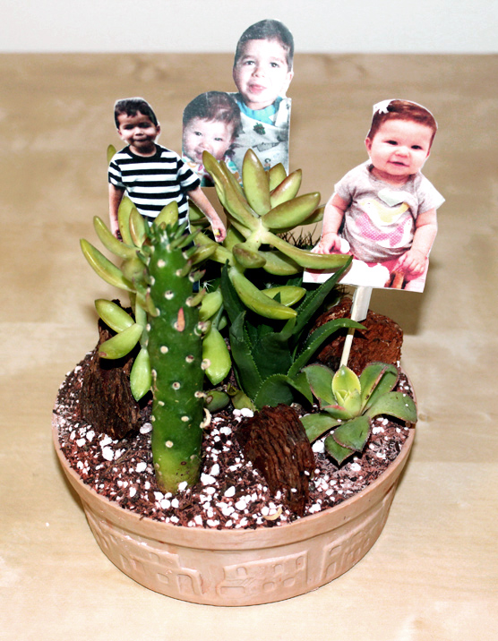 diy-fathers-day-gifts_photo-terrarium-complete
