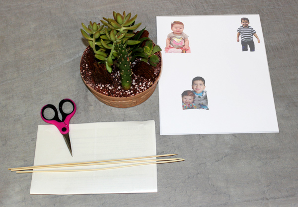 diy-fathers-day-gifts_photo-terrarium-supplies