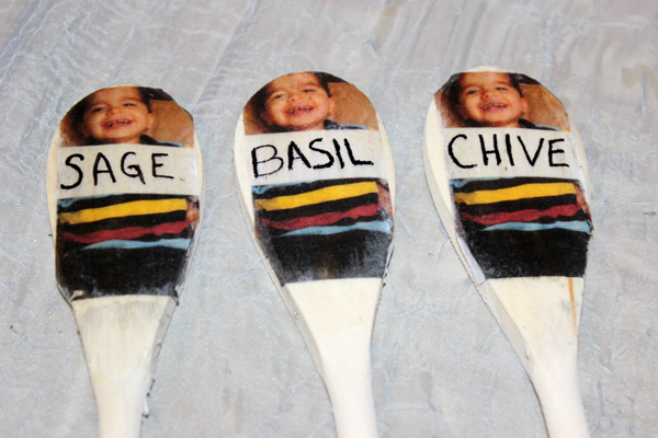 diy-garden-markers-with-photo-1