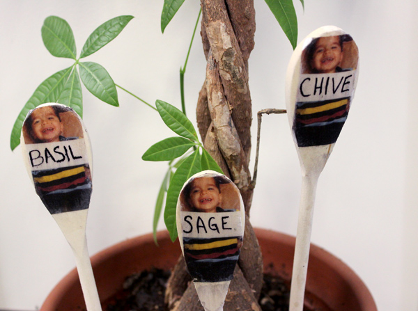 diy-garden-markers-with-photo-3