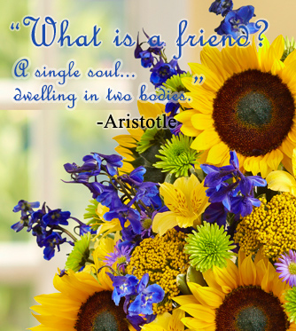 friendship-quotes-aristotle-what-is-a-friend