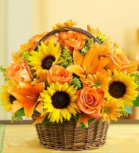 fields-of-europe-for-fall-basket-91932
