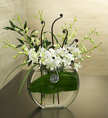local-exclusive-flowers4giftseattle-simple-sincere-dendrobiums