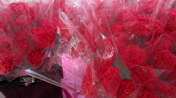 making-strides-against-breast-cancer-walk-jones-beach-ny-1800flowers-pink-flowers