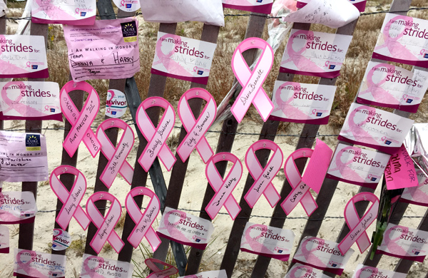 making-strides-against-breast-cancer-walk-jones-beach-ny