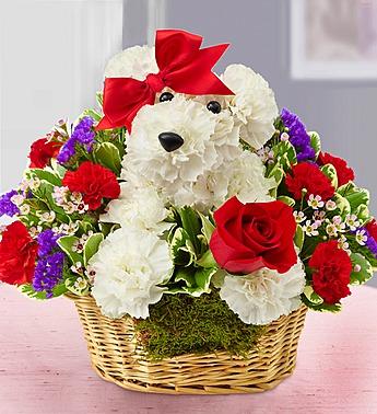 02-04-15 Love Pup
