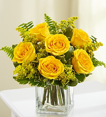 loves-embrace-roses-yellow-105213