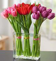 modern-valentine-tulips