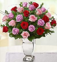 valentine-rose-medley