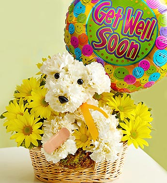 get-well-gift-ideas-a-dog-able