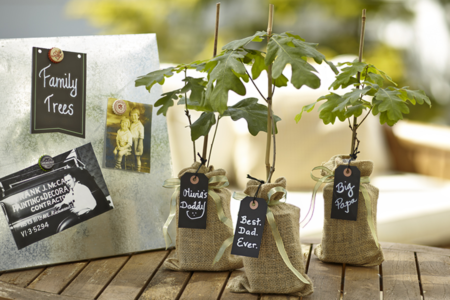 Plant a Tree for Dad