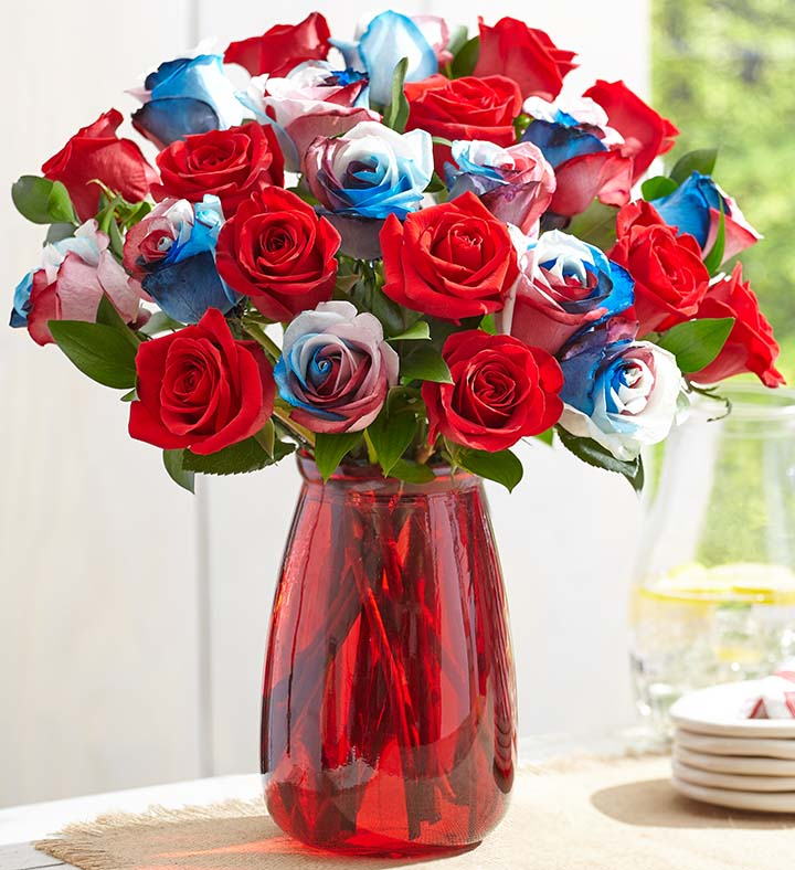 Kaleidoscope Roses, Red, White & Blue 4th of July, Independence Day 144306