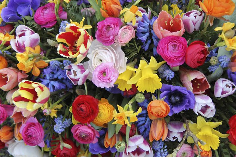 State Flowers Petal Talk