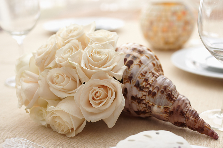 Coastal Flowers- Roses in a Conch Shell