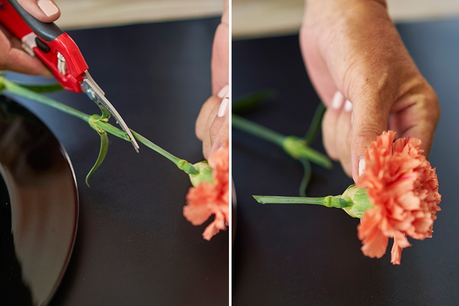 Cut flower stems on an angle