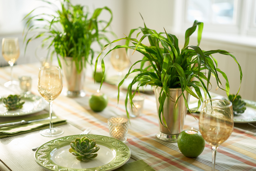 Green Plant Centerpieces